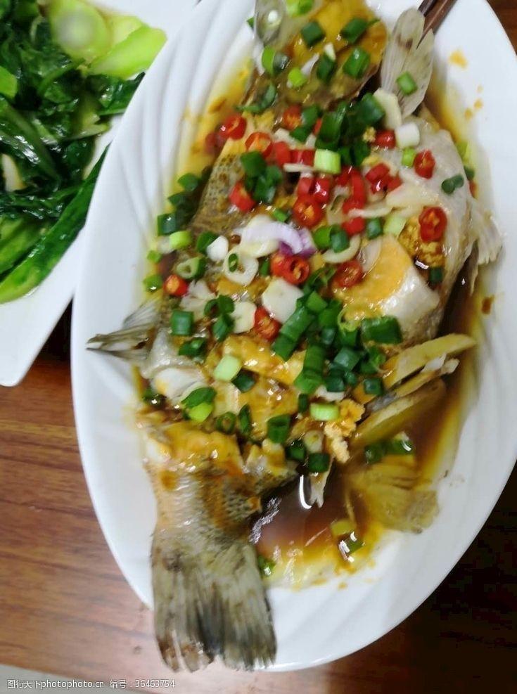 清蒸魚設計