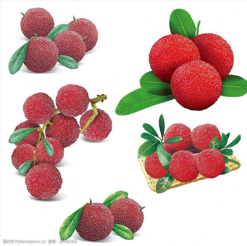 水果楊梅合集