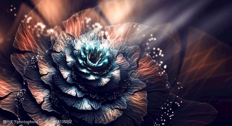 分形花分形之花