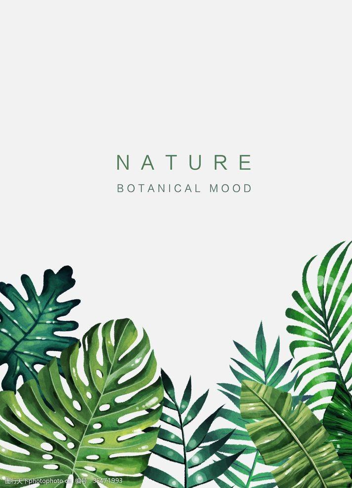 花草模型绿色植物绿色盆景室内装饰画