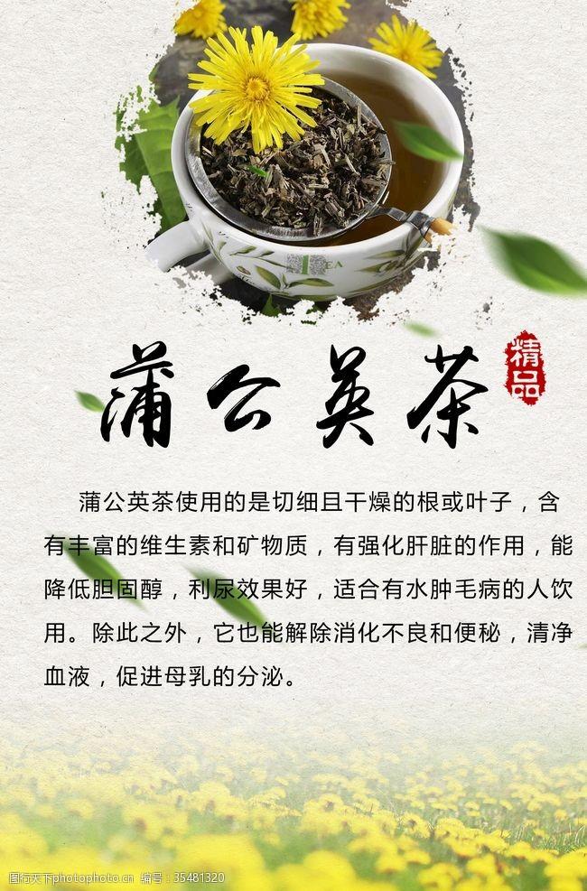 茶叶介绍蒲公英茶海报
