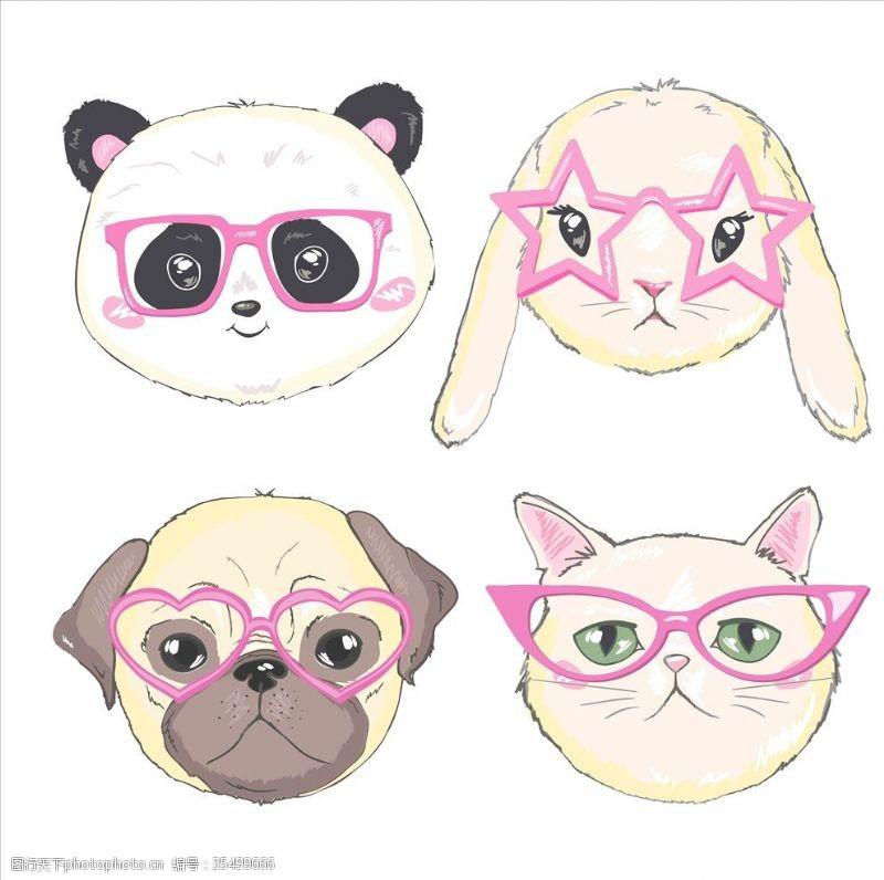 眼镜狗带眼镜的猫狗