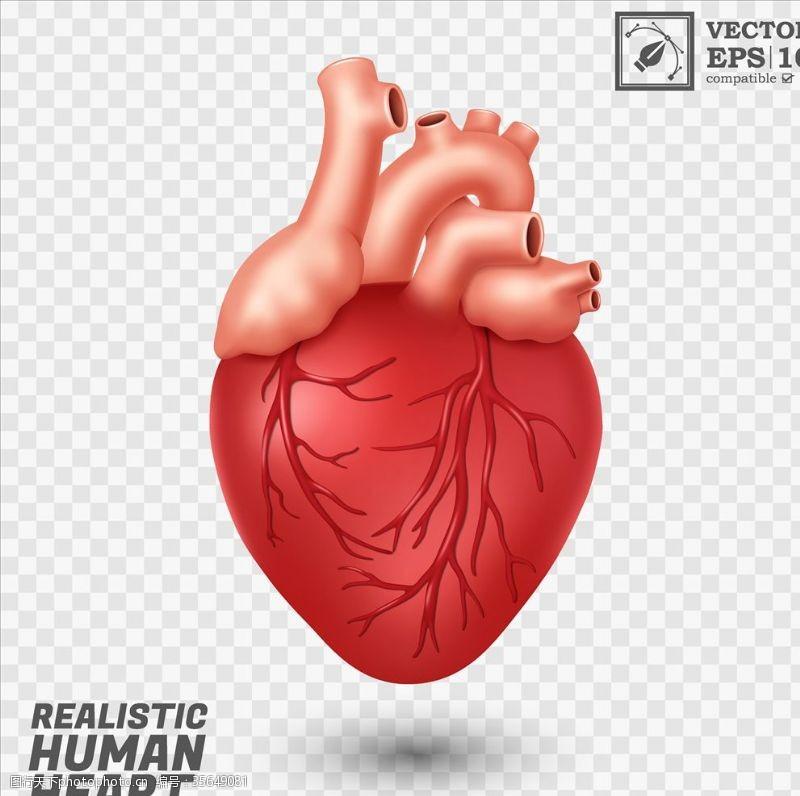 外形心脏背景