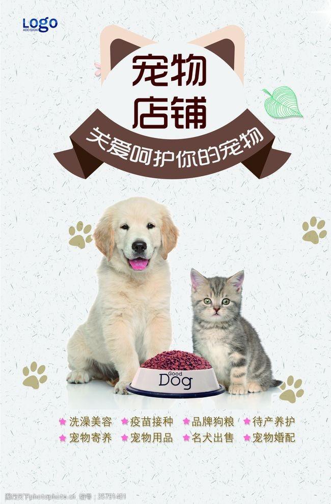 宠物口粮宠物海报
