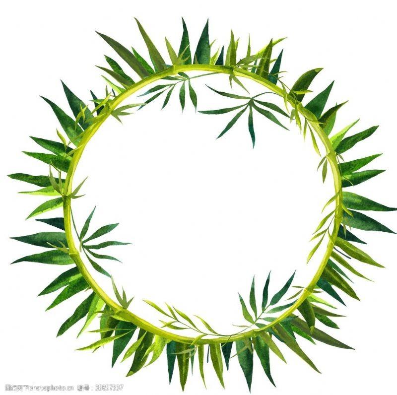 竹子的图案植物竹子装饰图案