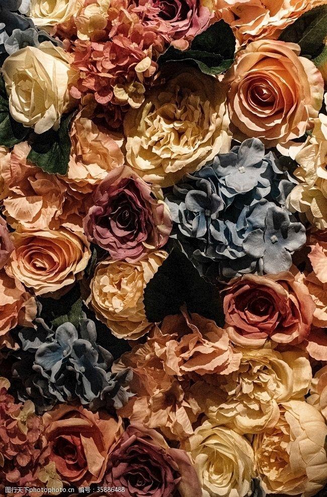 枯萎的花泛黄花朵组成的背景