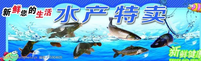 墙面画海鲜水产