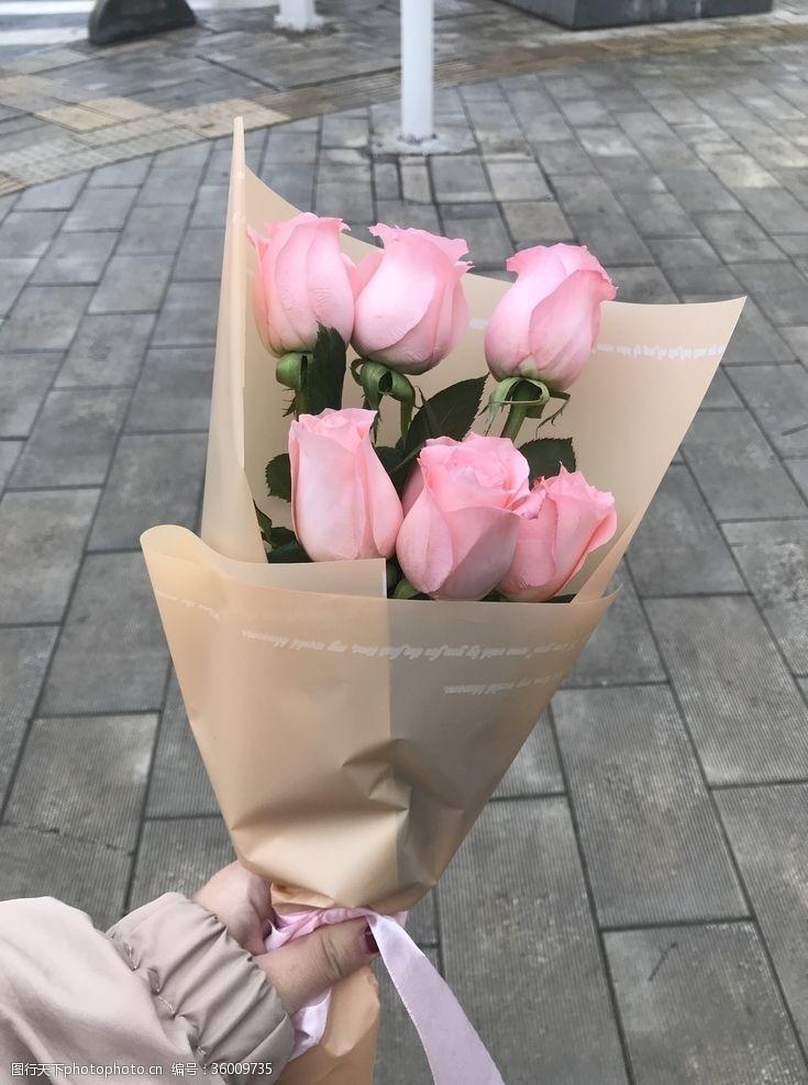 枯萎的花玫瑰花