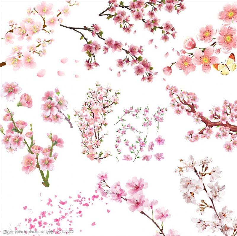 樱花主题花
