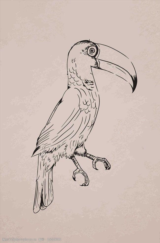 树枝小鸟小鸟