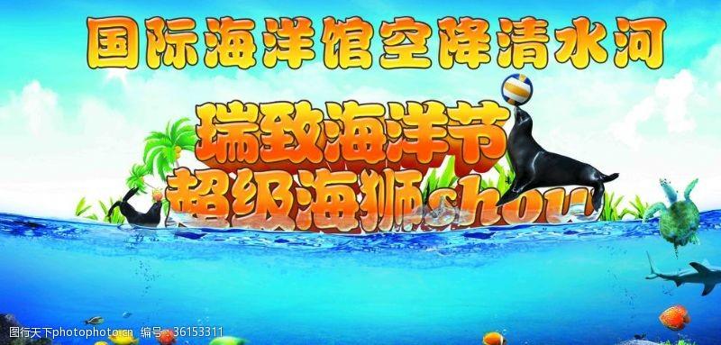 国际海洋馆超级海狮show