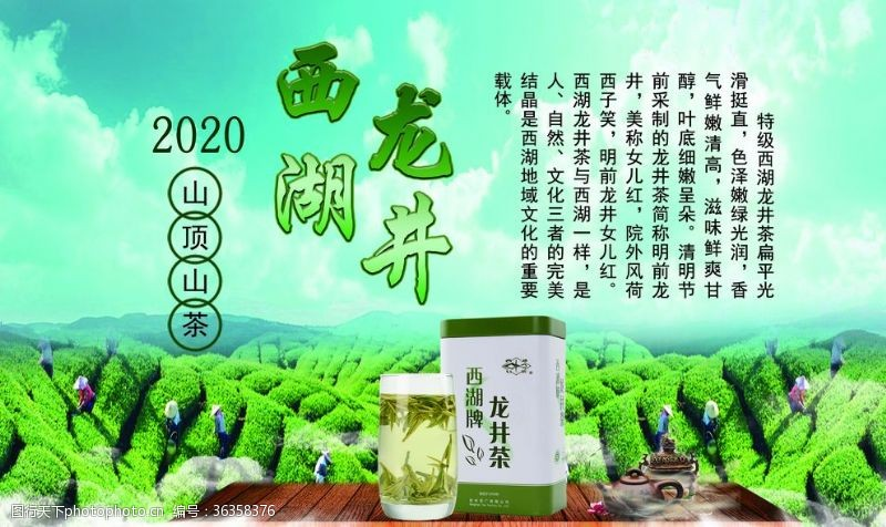 干茶叶西湖龙井