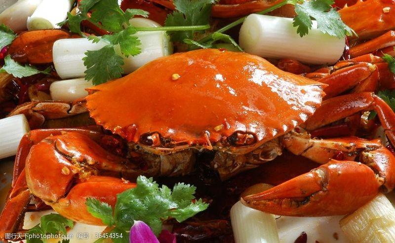 大闸蟹海报螃蟹