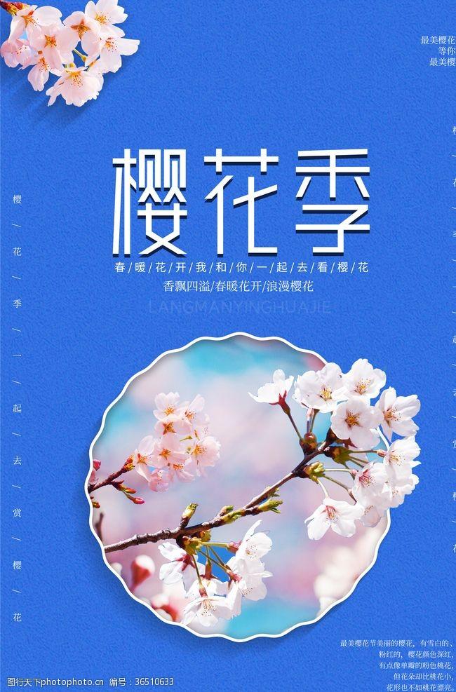 最美樱花节樱花季