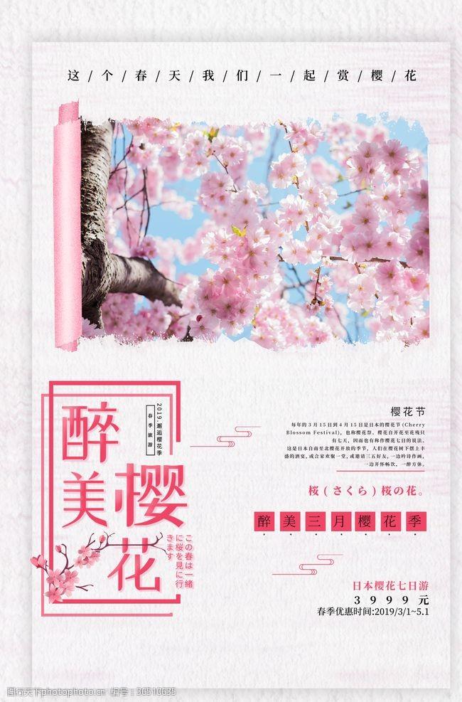 最美樱花节樱花