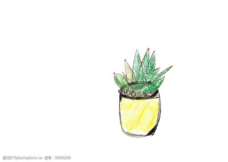 插画多肉小盆植物