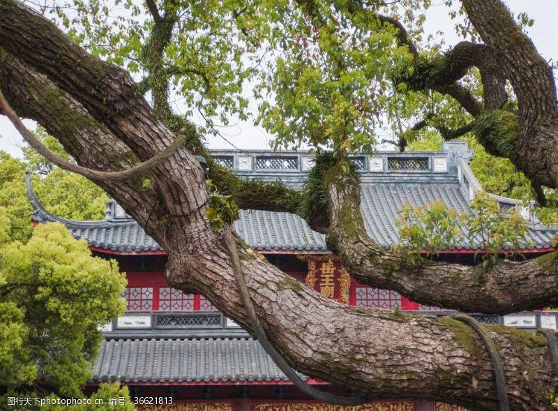 岳飞岳王庙