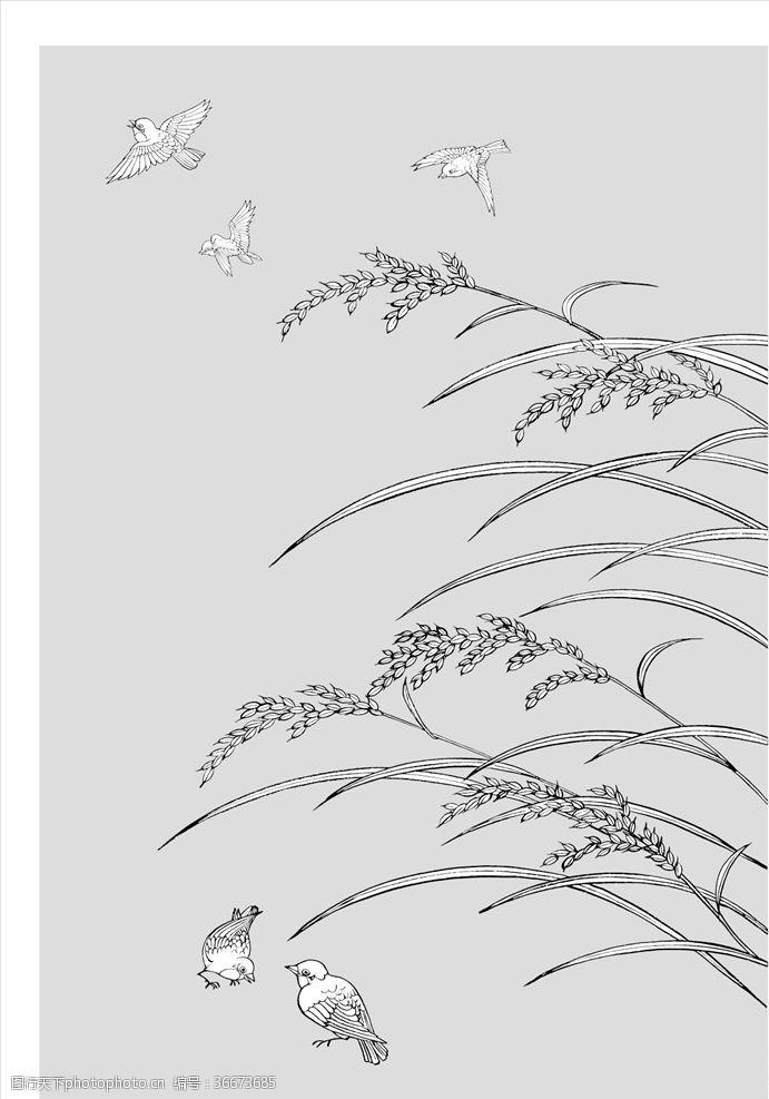 小鸟插图线描稻穗
