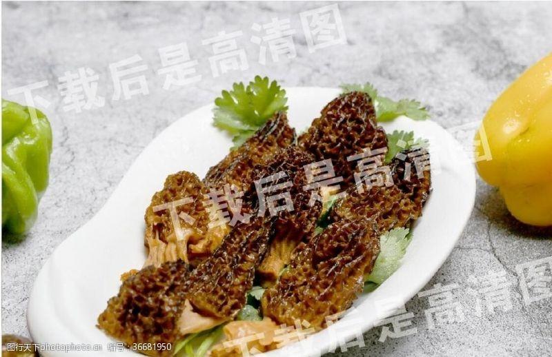 云南美食羊肚菌