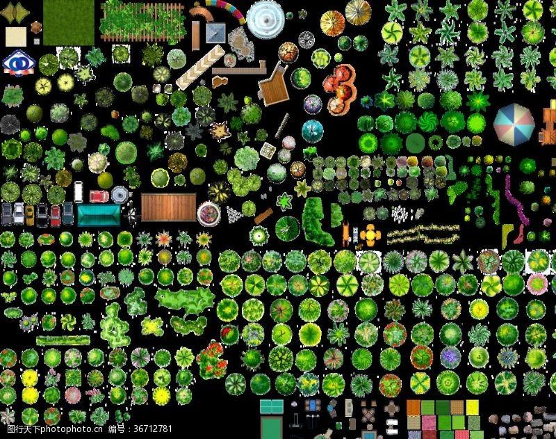 景观规划平面树彩图