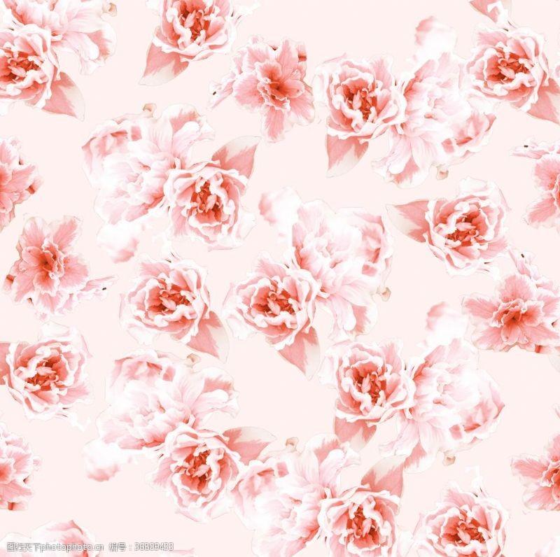 贴布绣无缝接花蕾布料