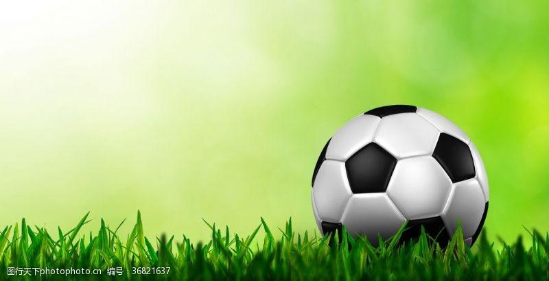足球场示意图足球