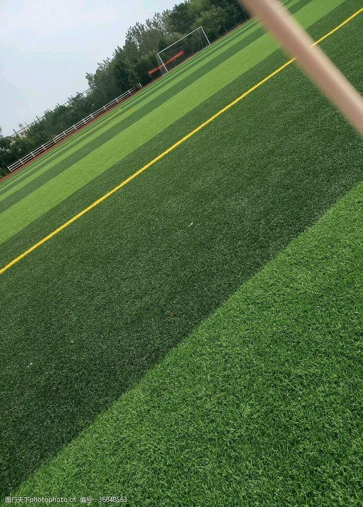 足球场草坪足球场