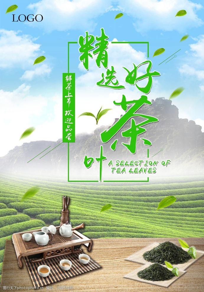 茶叶介绍茶叶海报