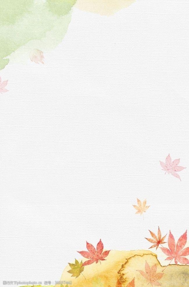 落叶背景枫叶