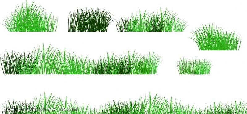 白菊花卡通绿草