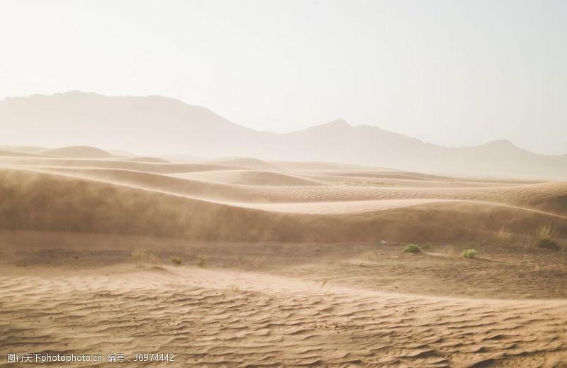 黄色背景素材沙漠沙丘