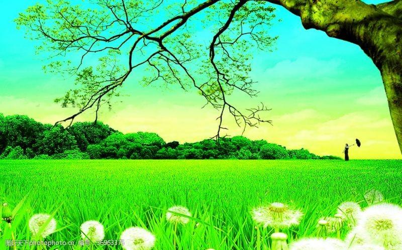 植物蒲公英企业宣传片房地产海报