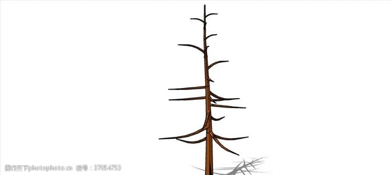 落叶树模型