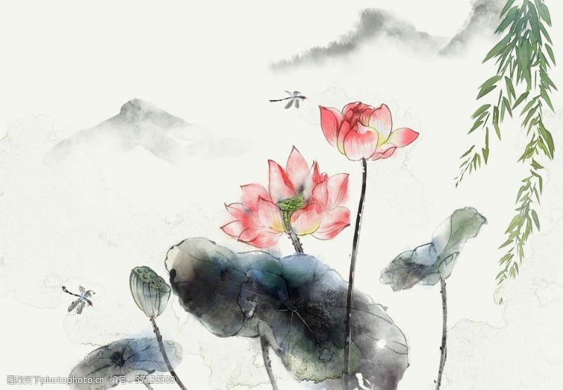 古典茶道夏日国画水墨水彩荷花蜻蜓