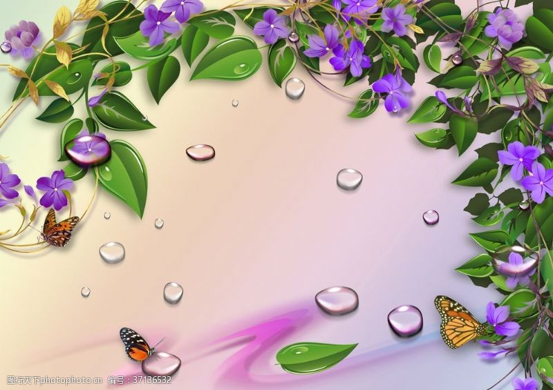 紫花绿叶藤蔓