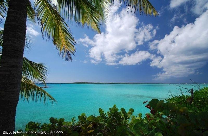 天堂岛海洋