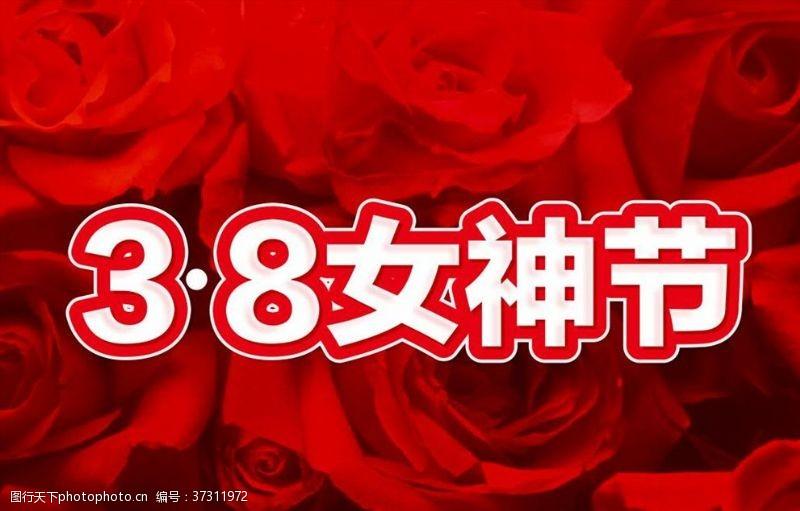 玫瑰花背景38女神节