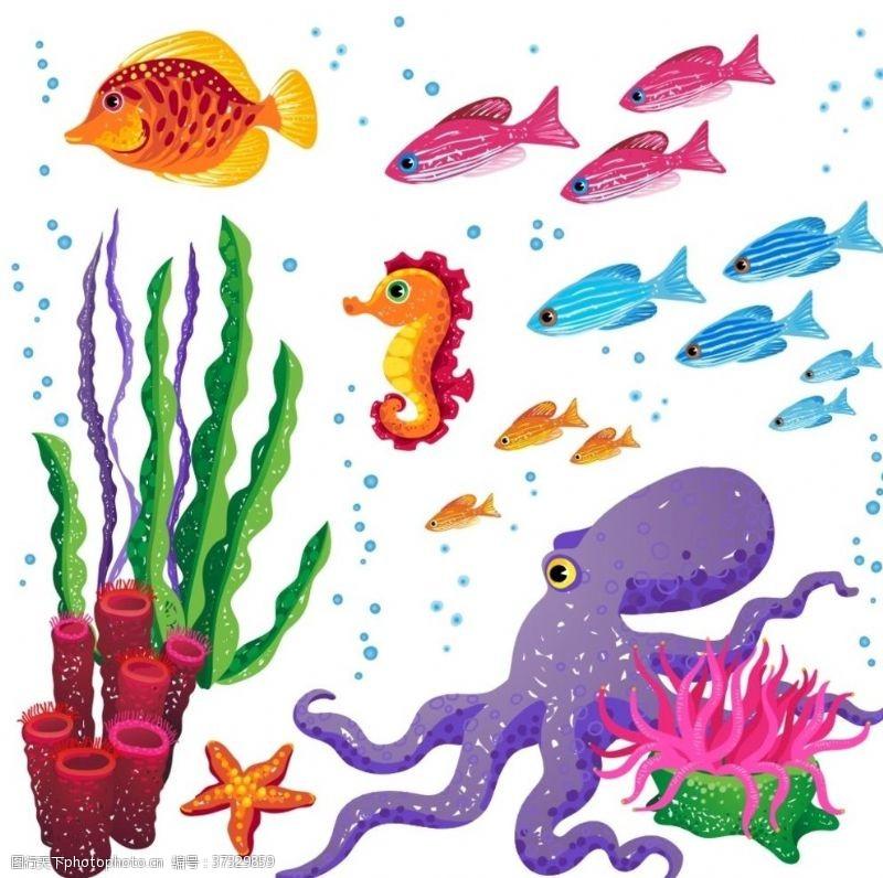fish海底世界
