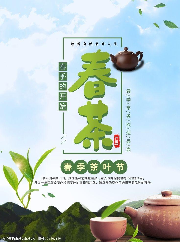 国茶文化春茶