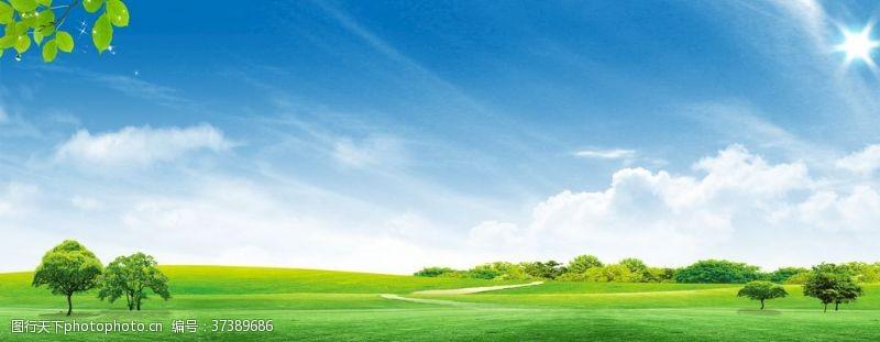 草坪天空草原