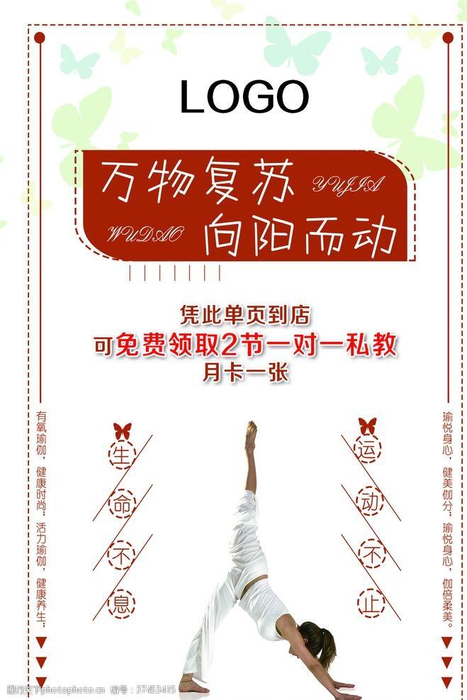 自由搏击瑜伽舞蹈培训招生