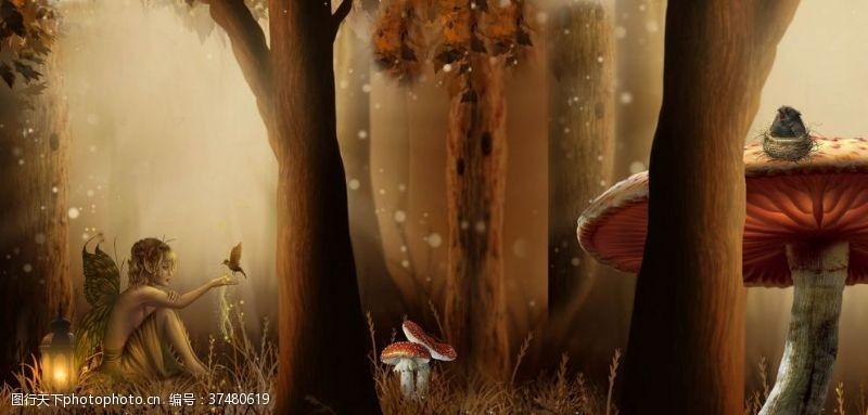 鸟巢森林童话