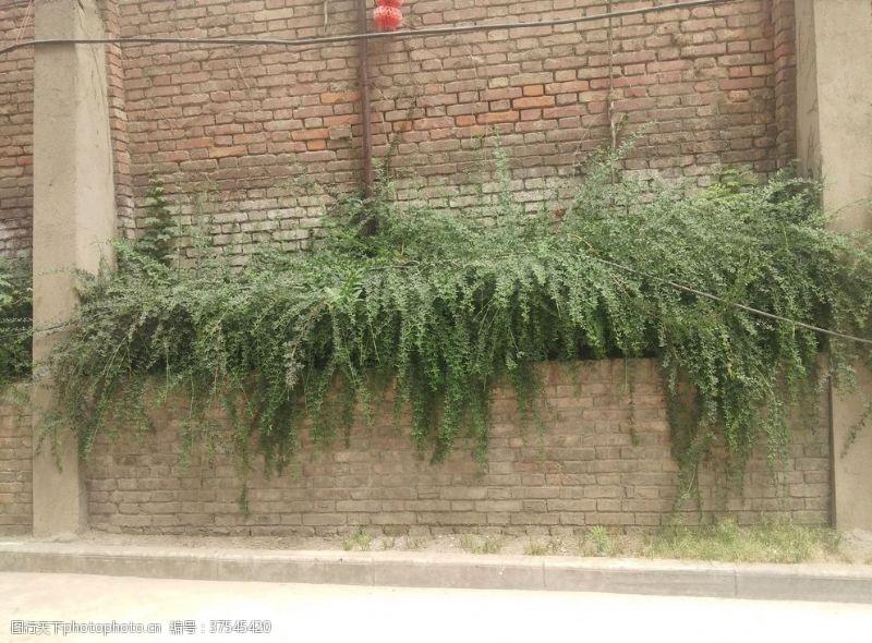楼房老社区的墙