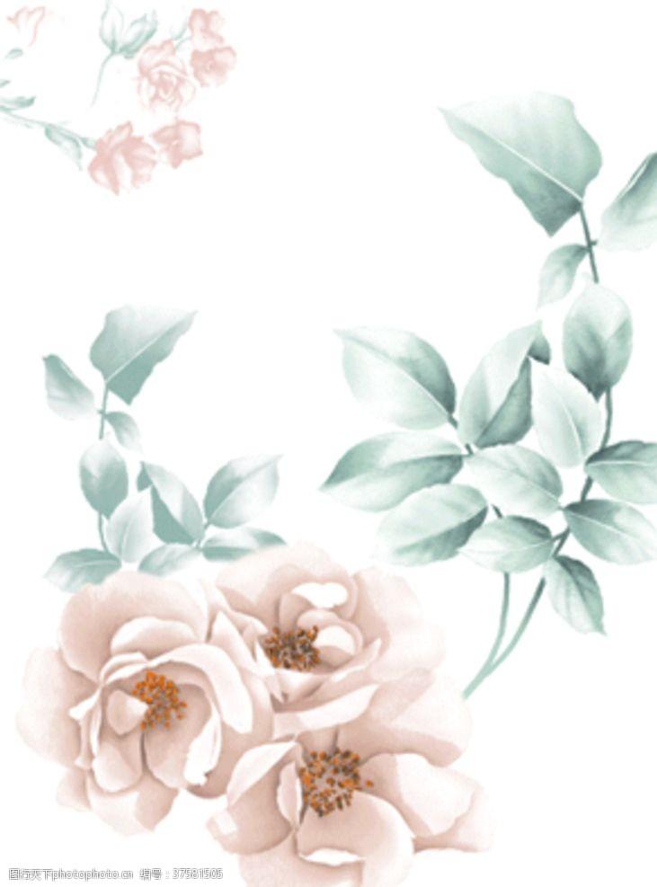 梅花手绘花