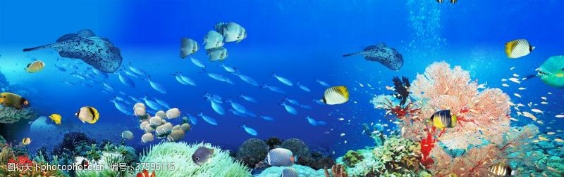 海底珊瑚海底世界背景