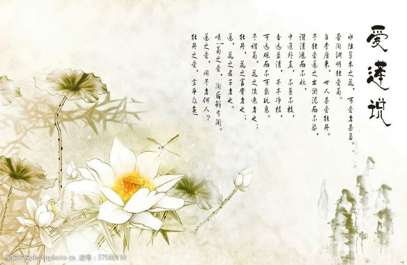 中国风背景墙爱莲说背景
