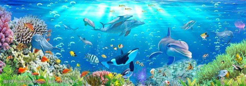 海底珊瑚海底世界