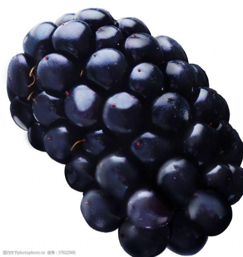 其他模板蓝莓