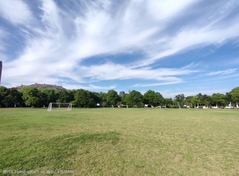足球场草坪设计
