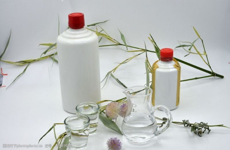 植物蒲公英白酒